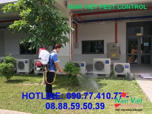 Dịch vụ diệt muỗi giá tốt ở Gò Vấp