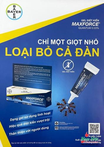 Gel diệt kiến Maxforce Quantum - Chỉ 1 giọt diệt cả tổ kiến